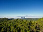 La Gomera-Kanaren-Wanderreise-Pico de Garajonay