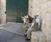 Israel-wanderreise-beduine