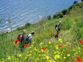 Italien-Wanderreise-Cinque Terre-blühende-Küsten