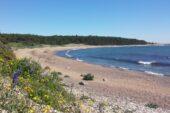 estland-aktivreise-natur-strand