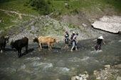 Georgien-Frauenreise-Swanetien-Flussquerung
