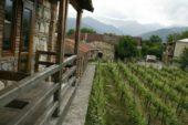 Georgien-Weinreise-Weingut