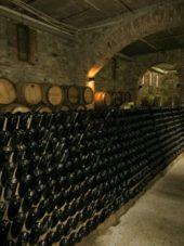 Georgien-Weinreise-Weingut-Schuchmann