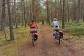 polen-aktivreise-radfahrer-wald