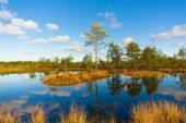 Baltikum, Nationalpark, wandern