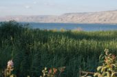 Israel-wanderreise-see-genezareth