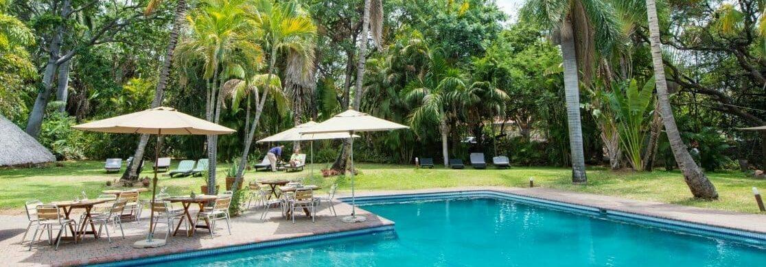 Südafrika - Lodge Paket 6 Tage: Pool in der Sefapane Lodge mit Palmen