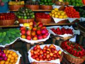 madeira-wanderreise-markt