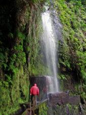 wanderreise-madeira-wasserfall-levada