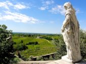 italien-wanderreise-weingebiet-collio